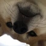 lidium님의 프로필 사진